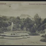 Parcul cu arini si spitalul garnizoanei - Sibiu - Erlenpark und Garnisonsspital, Necirculata, Fotografie