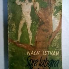 Nagy Istvan - Spre tabara din padure