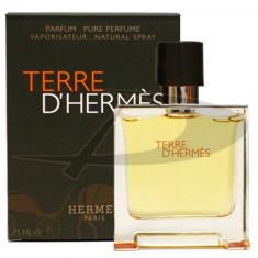Hermes Terre Eau de Parfum, 75 ml, Apă de parfum, pentru Barbati - Parfum barbati