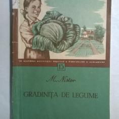 M. Nistor - Gradinita de legume