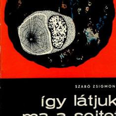 LICHIDARE-Igy latjuk ma a sejtet - Autor : Szabo Zsigmond - 70860 - Curs Limba Maghiara