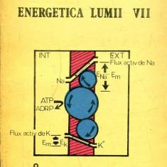 LICHIDARE-Energetica lumii vii - Autor : Doru Georg Margineanu - 131351 - Carti Energetica