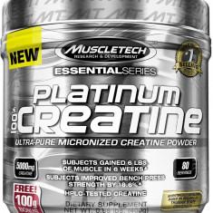 Muscletech Platinum Creatine - Creatina