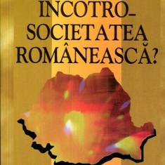 LICHIDARE-Incotro societatea romaneasca - Autor : Ion Iliescu - 95056 - Carte Politica