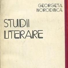 LICHIDARE-Studii literare - Autor : Georgeta Horodinca - 133259 - Studiu literar