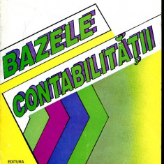 LICHIDARE-Bazele contabilitatii - Autor : Oprea Calin - 101487 - Carte Contabilitate