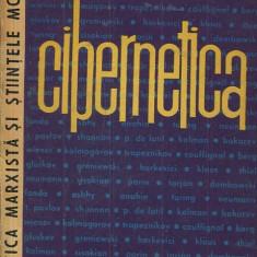 LICHIDARE-Cibernetica- vol.IV - Autor : - - 94455 - Carte Informatica