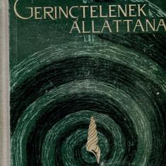 LICHIDARE-Gerinctelenek allattana - Autor : Peterfi Ferenc - 70918 - Curs Limba Maghiara