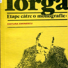 LICHIDARE-N. Iorga- etape catre o monografie - Autor : Dan Zamfirescu - 88503 - Biografie