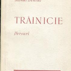 LICHIDARE-Trainicie - Autor : Mihai Beniuc - 116731