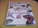 PRIMA MEA ENCICLOPEDIE TEORA 2005,320 PAG.ILUSTRATE,FORMAT MARE TIP CATALOG, Alta editura
