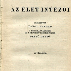 LICHIDARE-Az elet intezoi - Autor : Sure Barnett - 75491 - Curs Limba Maghiara