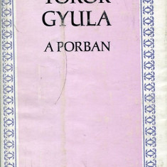 LICHIDARE-A porban - Autor : Torok Gyula - 71039 - Curs Limba Maghiara