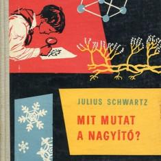 LICHIDARE-Mit mutat a nagyito? - Autor : Julius Schwartz - 75517 - Curs Limba Maghiara
