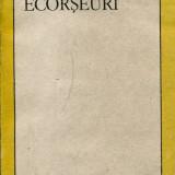 LICHIDARE-Ecorseuri - Autor : Doina Uricariu - 73691