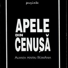 LICHIDARE-Apele din cenusa- alianta pentru Romania - Autor : Nicolae Cristache - 136160 - Carte Drept penal