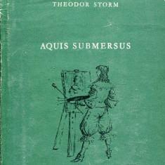 LICHIDARE-Aquis submeresus - Autor : Theodor Storm - 75643 - Curs Limba Maghiara