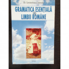 GRAMATICA ESENTIALA A LIMBII ROMANE - Carte Teste Nationale