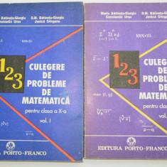 Culegere de probleme clasa a X -a vol. I + vol. II 1993