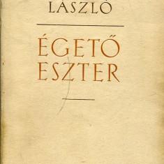 LICHIDARE-Egeto Eszter - Autor : Nemeth Laszlo - 75443 - Curs Limba Maghiara