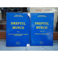 DREPTUL MUNCII 2 VOLUME, MARIN VOICU, 2001 - Carte Dreptul muncii