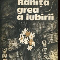 LICHIDARE-Ranita grea a iubirii - Autor : Vasile Baran - 10033 - Roman