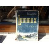 Luminox , Fannie Hurst