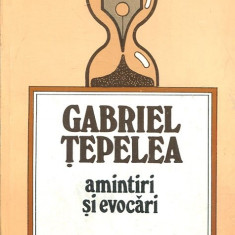 LICHIDARE-Amintiri si evocari - Autor : Gabriel Tepelea - 153665