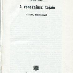 LICHIDARE-A reneszansz tajain - Autor : Olah Tibor - 70886 - Curs Limba Maghiara
