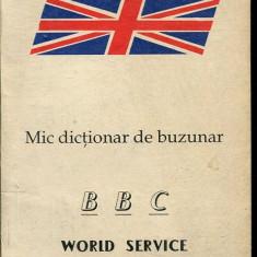 LICHIDARE-Mic dictionar de buzunar- world service - Autor : - - 113087 - Enciclopedie