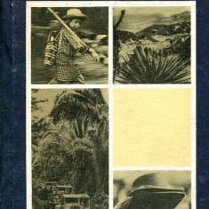 LICHIDARE-Tarile Americii Centrale - Autor : Constantin Bucur - 73402 - Carte Geografie