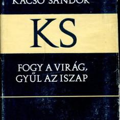 LICHIDARE-Fogy a virag, gyul az iszap - Autor : Kacso Sandor - 75482 - Curs Limba Maghiara