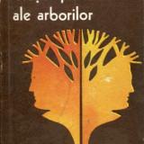 LICHIDARE-Vietile paralele ale arborilor - Autor : Mircea Carloanta - 87174 - Roman