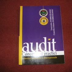Audit Concepte Si Practici Abordare Nationala Si Internationala - L. Dobroteanu - Carte Drept bancar