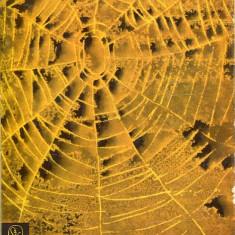 LICHIDARE-A porban - Autor : Torok Gyula - 75426 - Curs Limba Maghiara