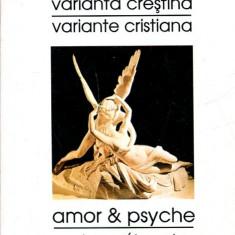 LICHIDARE-Varianta crestina - Autor : Cristina-maria Purdescu - 135137