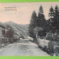 Rastolita - Mures - Carte Postala Muntenia 1904-1918, Circulata, Fotografie