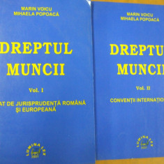 Dreptul muncii 2 volume jurisprudenta romana si europeana conventii 2001 - Carte Dreptul muncii