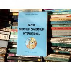 Bazele dreptului comertuui international, Conf. univ. dr. Ioan Mizga, 1996 - Carte Drept international