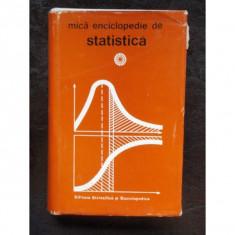 MICA ENCICLOPEDIE DE STATISTICA - Carte despre internet