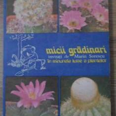 Micii Gradinari In Minunata Lume A Plantelor - S.copacescu B.bobirnac V.grigoras, 393759 - Carti Agronomie
