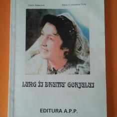 Lung ii Drumu' Gorjului - Matei Stancioiu / C9P, Alta editura