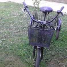 Tricicleta dama noua - Bicicleta Dama Corratec, 22 inch, 10 inch, Numar viteze: 8