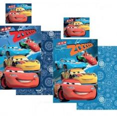 Lenjerie de pat pentru copii Disney Cars 2 piese - Lenjerie pat copii