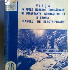 Nicolae Bacalbasa - Viata in apele noastre curgatoare si importanta cunoasterii ei in cadrul planului de elelectrificare - Carte Biologie
