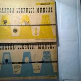 Ilie Mirea - Cartea lucrului manual {2 volume}
