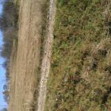 Teren de vanzare, 1300 mp, Teren intravilan