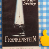 Frankenstein Mary W Shelley - Roman