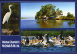 Carte postala necirculata - Romania - Delta Dunarii -, Printata
