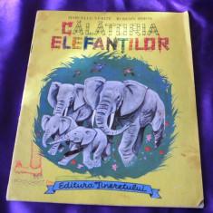 Calatoria elefantilor - marcelle Verite, Romain Simon (f3102 - Carte de povesti